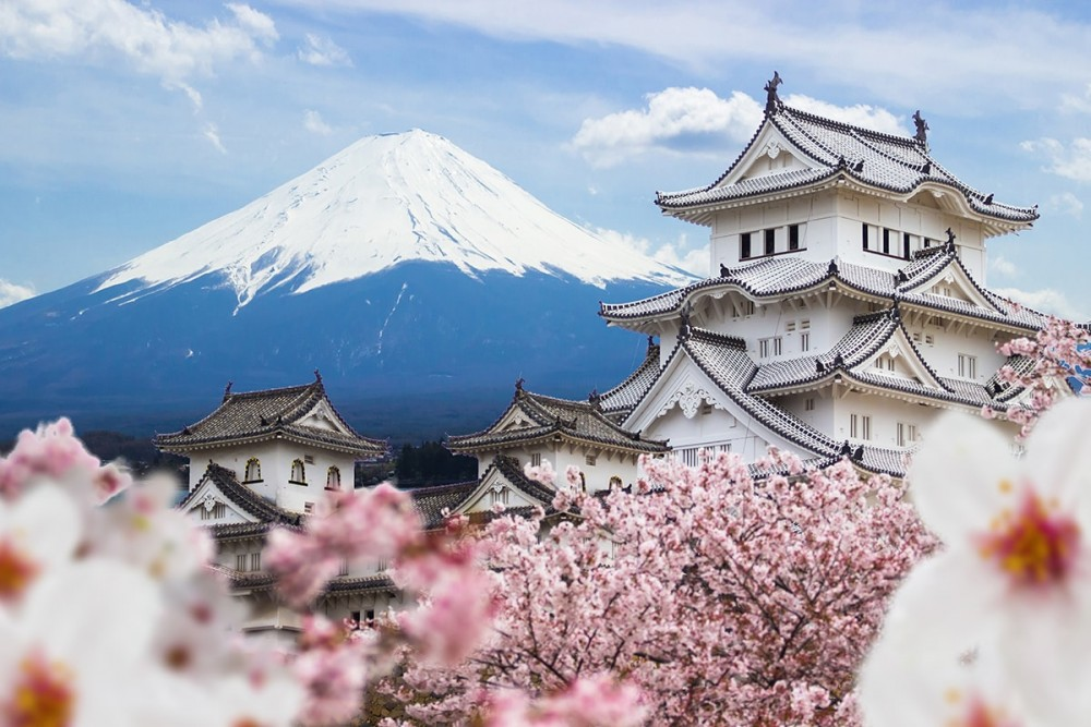 Nhận order hàng Nhật Bản liên tục nhanh và đơn giản